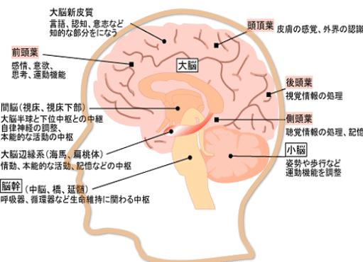 脳梗塞後遺症の症状の種類
